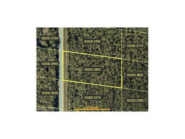 24311 & 24299 Roger Dodger St, Bonita Springs, FL 34135 (#217046235) :: Homes and Land Brokers, Inc