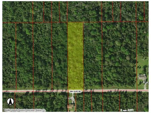 3785 60 Ave NE, Naples, FL 34120 (#217047259) :: Homes and Land Brokers, Inc