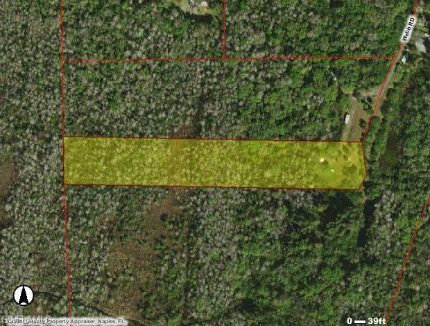 615 Webb Rd, Naples, FL 34139 (MLS #218017543) :: Clausen Properties, Inc.