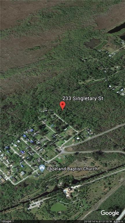 233 Singletary St, Naples, FL 34114 (MLS #218032150) :: The New Home Spot, Inc.