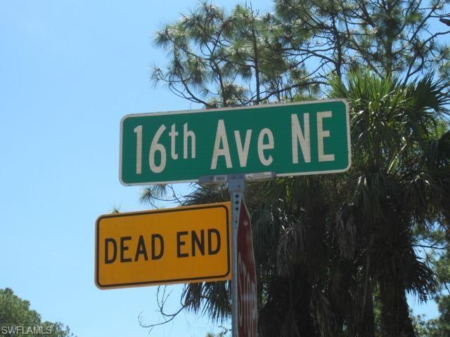 00 16th Ave NE, Naples, FL 34117 (MLS #218067775) :: Kris Asquith's Diamond Coastal Group