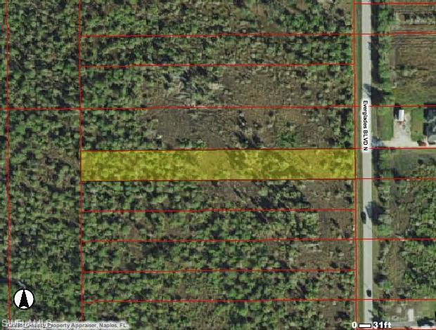 Everglades Blvd N, Naples, FL 34120 (MLS #218067810) :: Kris Asquith's Diamond Coastal Group