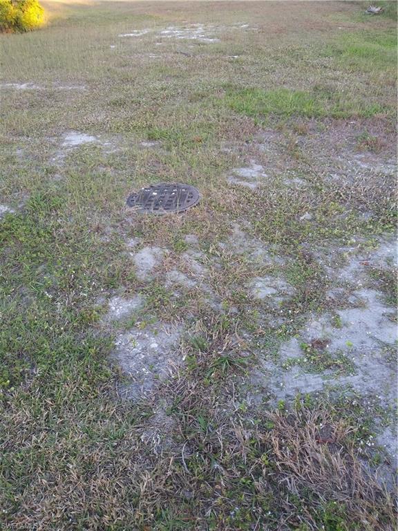 2735 Arbutus St, Naples, FL 34112 (MLS #219002026) :: Clausen Properties, Inc.