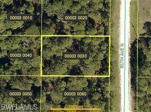 4603 Ruth Ave N, Lehigh Acres, FL 33971 (MLS #219014203) :: RE/MAX DREAM