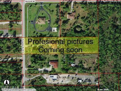 2260 Everglades Blvd S, Naples, FL 34117 (MLS #219017732) :: The Naples Beach And Homes Team/MVP Realty