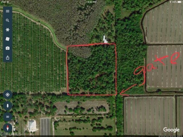 8111 Redhawk Ln, Naples, FL 34120 (MLS #219022646) :: John R Wood Properties