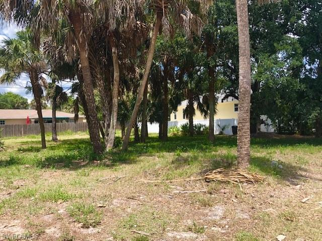 11671 Mckenna Ave, Bonita Springs, FL 34135 (MLS #219032785) :: The Naples Beach And Homes Team/MVP Realty