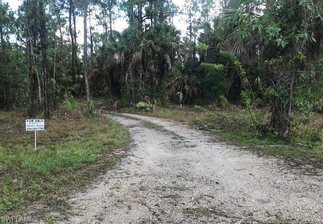 161 14th Ave NE, Naples, FL 34120 (MLS #219042106) :: RE/MAX Radiance