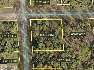 3000 E 22nd St, Alva, FL 33920 (MLS #219046021) :: Clausen Properties, Inc.