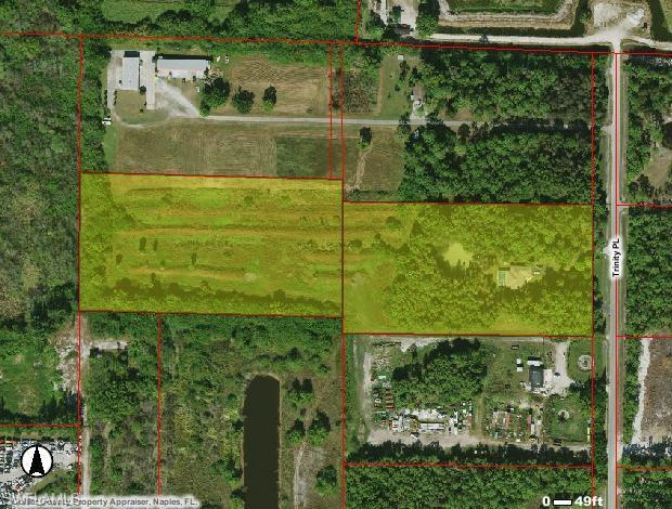 11081 Trinity Pl, Naples, FL 34114 (MLS #219048904) :: RE/MAX Realty Group