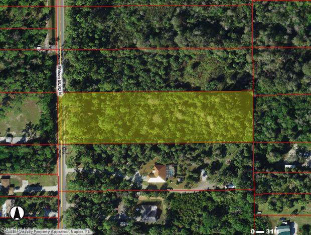 Wilson Blvd N, Naples, FL 34120 (MLS #219061634) :: Palm Paradise Real Estate