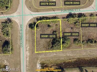 1202 Fontana St E, Lehigh Acres, FL 33974 (MLS #219071076) :: Palm Paradise Real Estate