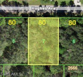 14127 Hughes Ave, Port Charlotte, FL 33953 (#219074301) :: Equity Realty