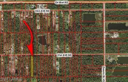 31st Ave Ne Ave NE, Naples, FL 34120 (#219075360) :: The Dellatorè Real Estate Group