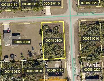3301 17th St SW, Lehigh Acres, FL 33976 (MLS #219082029) :: The Naples Beach And Homes Team/MVP Realty