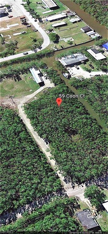 59 Coon Ct, Everglades City, FL 34139 (#219082623) :: The Dellatorè Real Estate Group