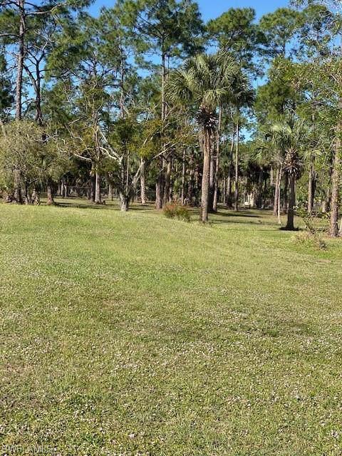 24459 Gijon Ln, Punta Gorda, FL 33955 (MLS #220001513) :: Clausen Properties, Inc.
