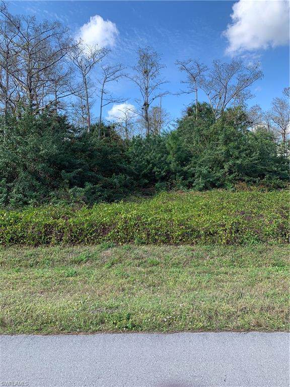 533 6th St SE, Naples, FL 34117 (MLS #220001882) :: Clausen Properties, Inc.