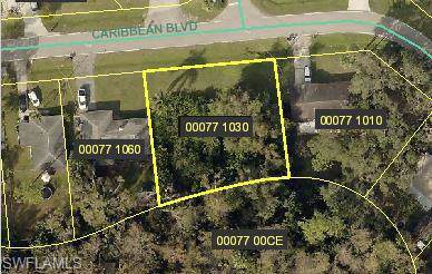 13125 Caribbean Blvd, Fort Myers, FL 33905 (#220003743) :: The Dellatorè Real Estate Group