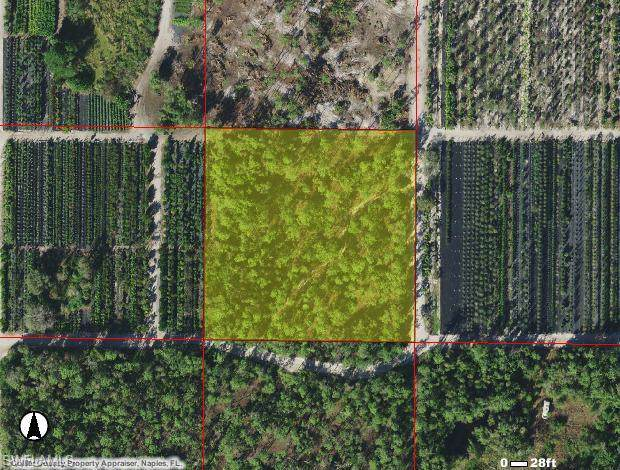 Lacewing Ln, Naples, FL 34114 (#220004055) :: Equity Realty