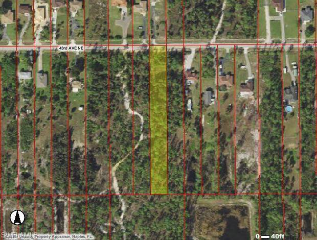 43rd Ave NE, Naples, FL 34120 (#220022415) :: Caine Premier Properties