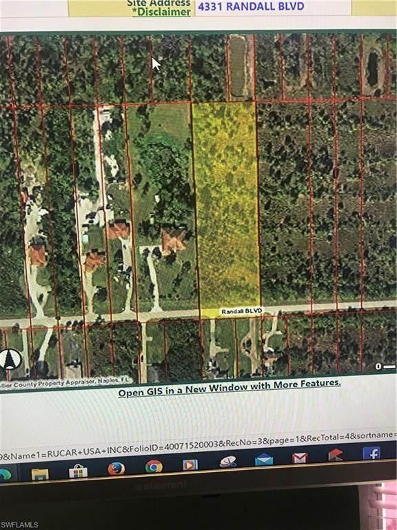 4331 Randall Blvd, Naples, FL 34120 (MLS #220030055) :: Kris Asquith's Diamond Coastal Group