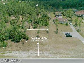 3040 Randall Blvd, Naples, FL 34120 (MLS #220032781) :: Kris Asquith's Diamond Coastal Group