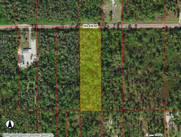 X 16th Ave NE, Naples, FL 34120 (MLS #220035236) :: Kris Asquith's Diamond Coastal Group