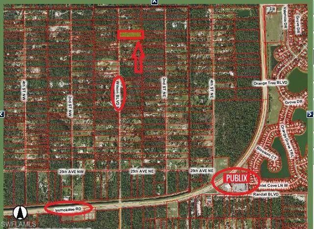 3090 Wilson Blvd N, Naples, FL 34120 (MLS #220037922) :: NextHome Advisors