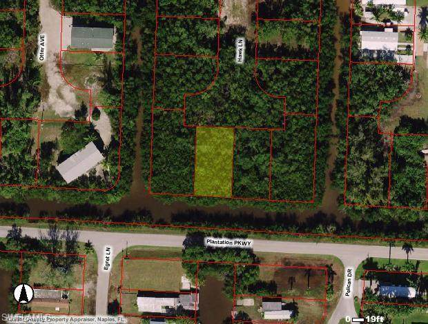 85 Hawk Ln, Everglades City, FL 34139 (#220060622) :: Equity Realty