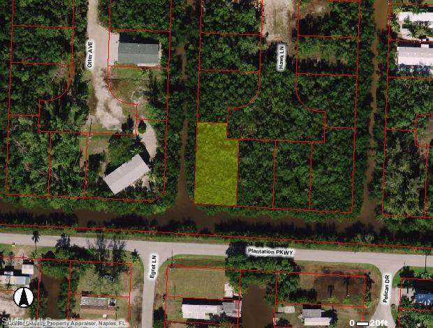 84 Hawk Ln, Everglades City, FL 34113 (#220060716) :: Equity Realty