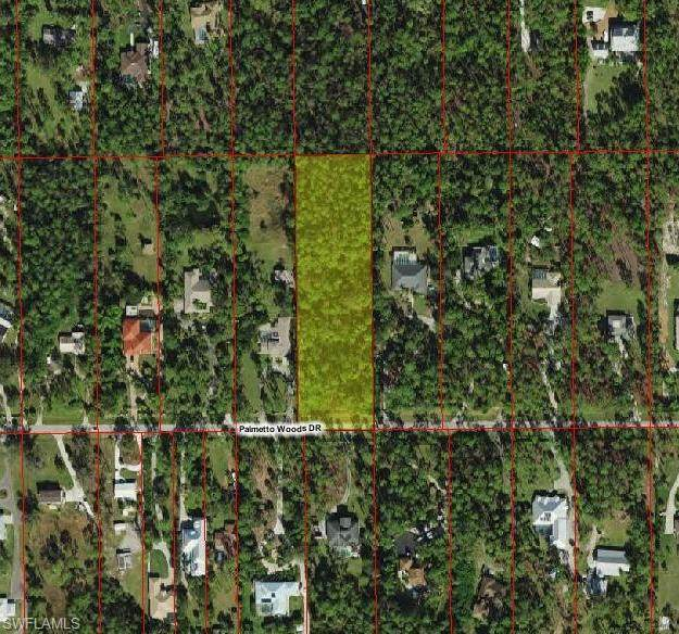 Palmetto Woods Dr - Photo 1
