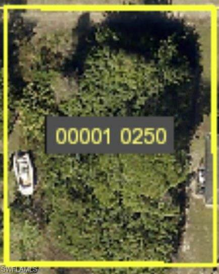 4628/4630 Douglas Ln, Lehigh Acres, FL 33973 (MLS #220064484) :: The Naples Beach And Homes Team/MVP Realty