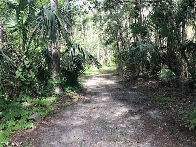 12084 Honeysuckle Rd, Fort Myers, FL 33966 (MLS #220068075) :: Avantgarde