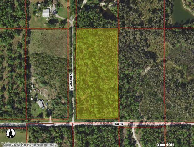 Platt Rd, Naples, FL 34120 (MLS #221003185) :: Realty Group Of Southwest Florida