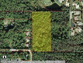 341200 Immokalee Rd, Naples, FL 34120 (MLS #221004352) :: Dalton Wade Real Estate Group