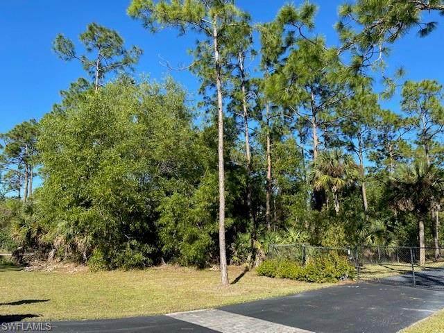 2nd Ave SE, Naples, FL 34117 (MLS #221005150) :: #1 Real Estate Services