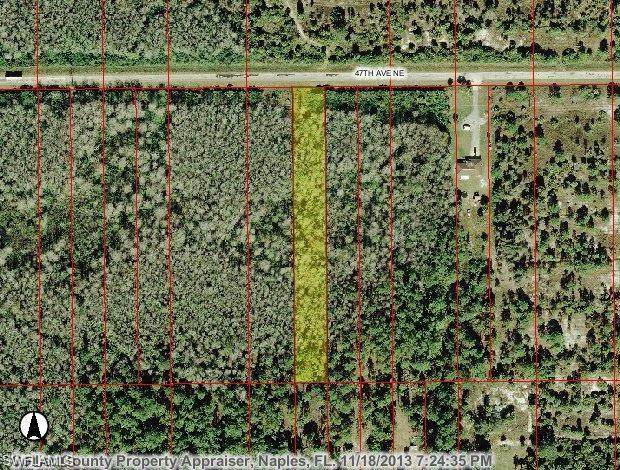 xxxx 47th Ave NE, Other, FL 34120 (MLS #221005634) :: #1 Real Estate Services