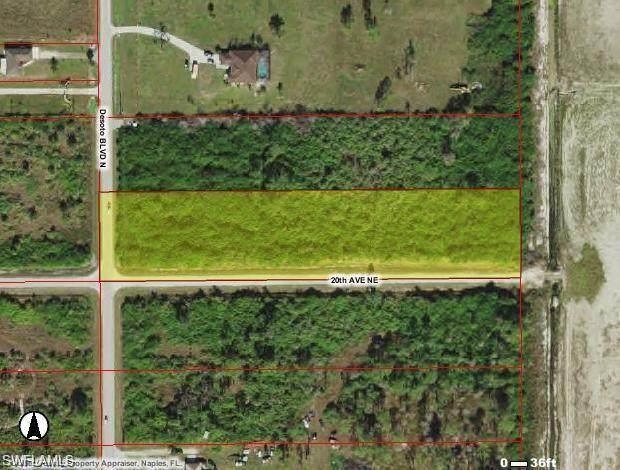Desoto Blvd And 20Th Ave, Naples, FL 34117 (#221006963) :: Southwest Florida R.E. Group Inc