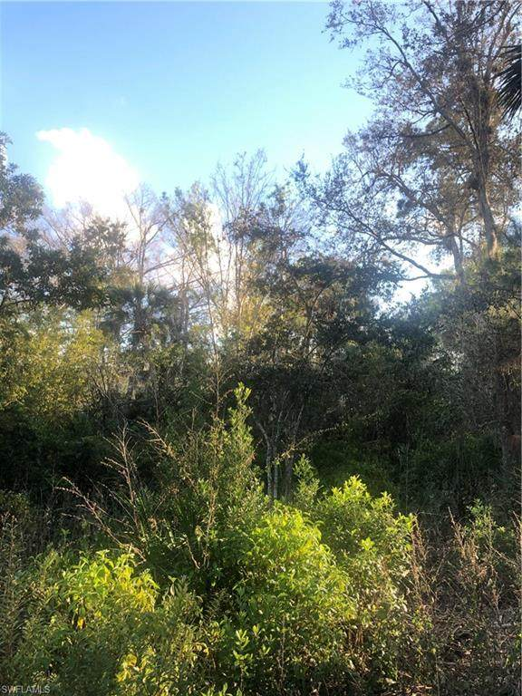 5th Ave SW, Naples, FL 34117 (MLS #221007784) :: Domain Realty