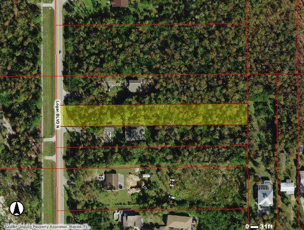 580 Logan Blvd N, Naples, FL 34119 (MLS #221008369) :: Domain Realty