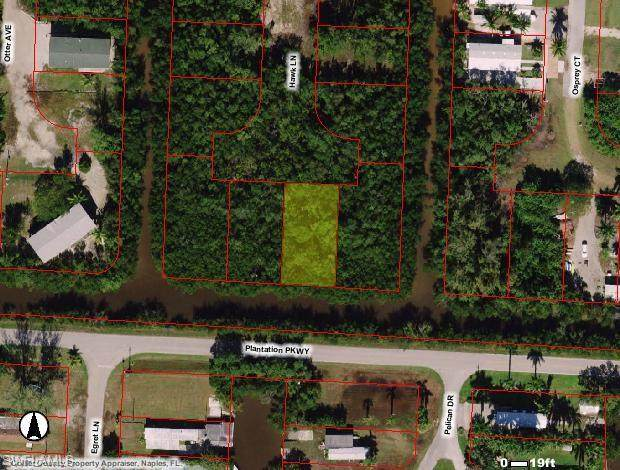 86 Hawk Ln, Everglades City, FL 34113 (MLS #221010531) :: Realty Group Of Southwest Florida