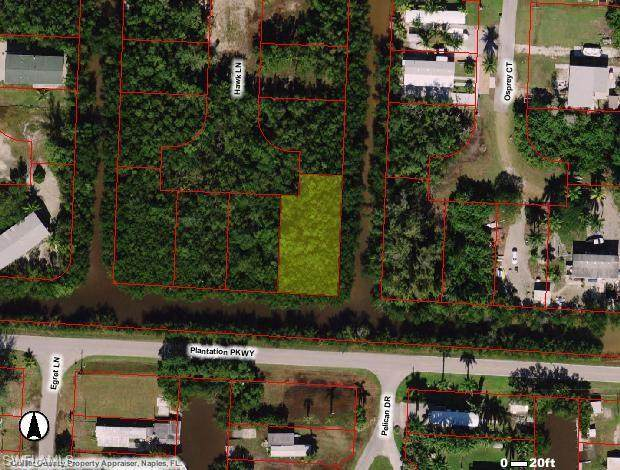 87 Hawk Ln, Everglades City, FL 34113 (MLS #221010532) :: Realty Group Of Southwest Florida