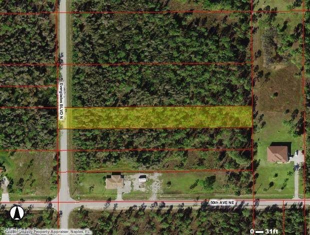 5044 Everglades Blvd N, Naples, FL 34120 (MLS #221012654) :: Domain Realty