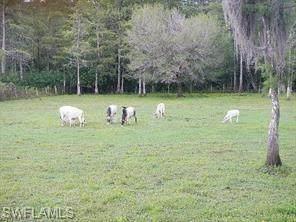 9294 Strike Ln, Bonita Springs, FL 34135 (#221020998) :: Jason Schiering, PA