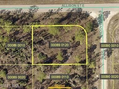 828 Andover Ave S, Lehigh Acres, FL 33974 (#221028291) :: Southwest Florida R.E. Group Inc