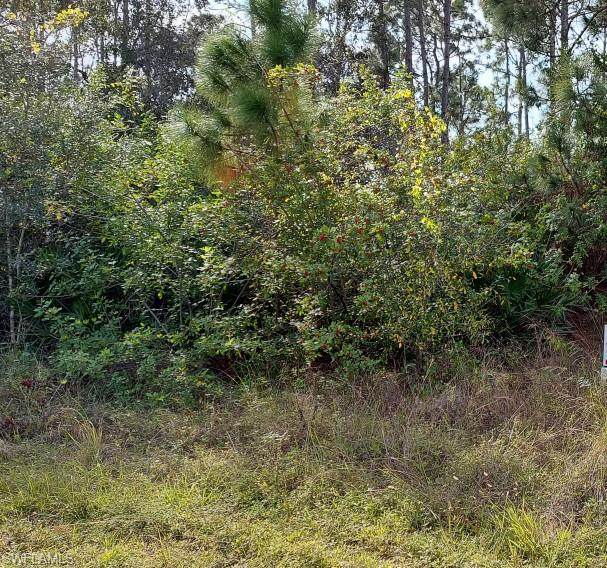 3501 3rd St SW, Lehigh Acres, FL 33976 (MLS #221029913) :: Waterfront Realty Group, INC.