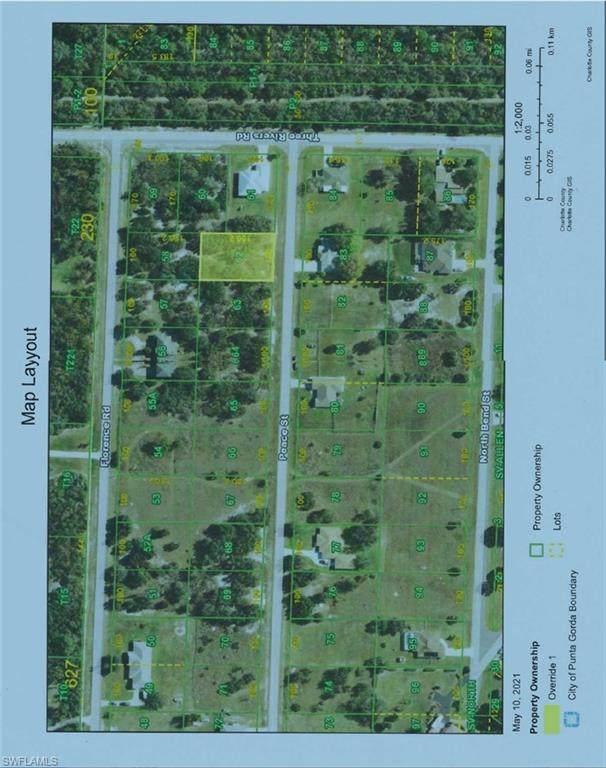31122 Peace St, Punta Gorda, FL 33982 (MLS #221035592) :: #1 Real Estate Services