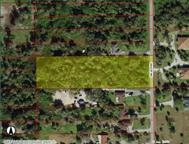 221 22nd St NE, Naples, FL 34120 (#221054115) :: Southwest Florida R.E. Group Inc