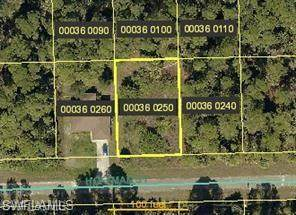3846 Hoffman St, Fort Myers, FL 33905 (#221054878) :: REMAX Affinity Plus
